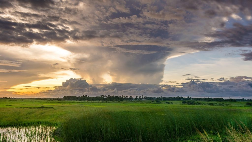 Huge tornado in the distance past a field of grass, against a sunset